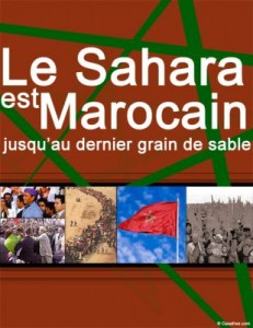 Sahara-Ikkrou3